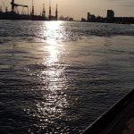 ARMO Hamburg